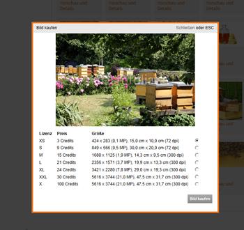 Foto und Text über content.de-Schnittstelle in Wordpress-Blog integrieren